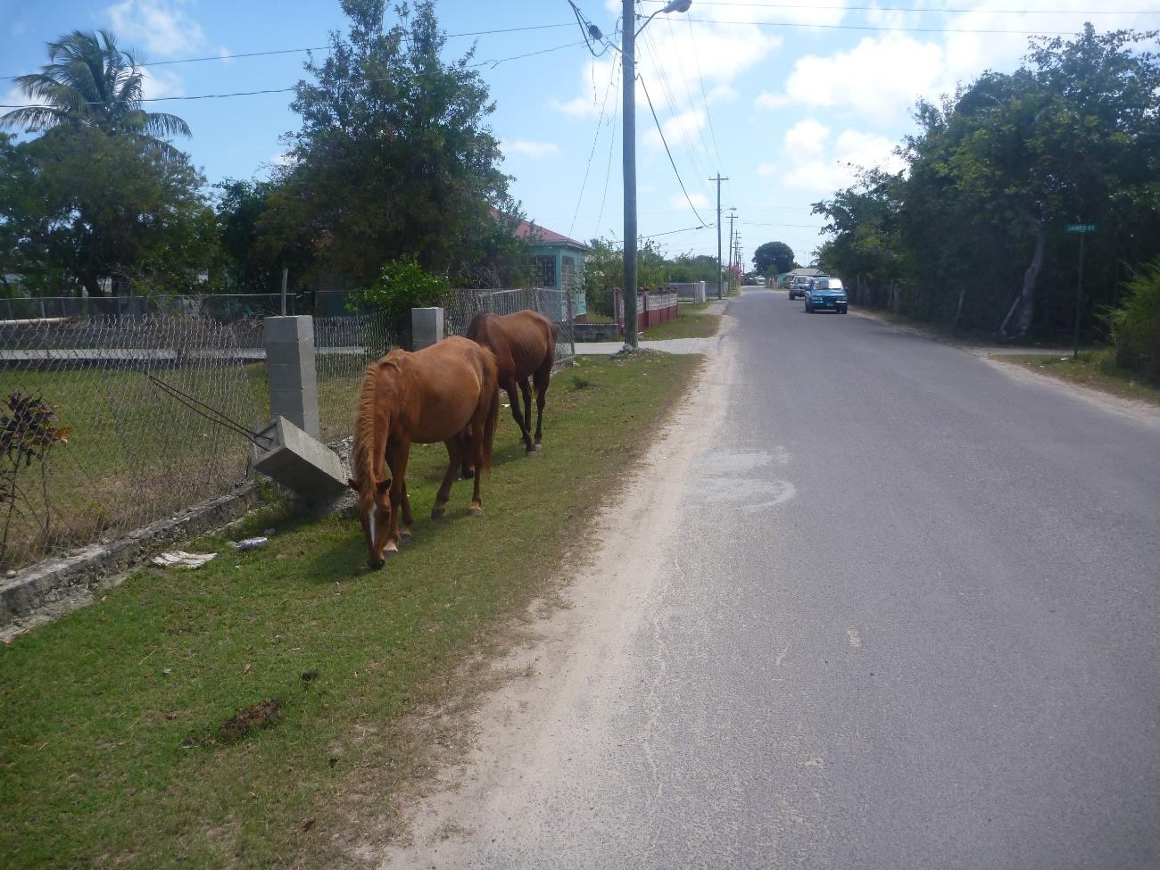 Fotgjengere i gatene på Barbuda
